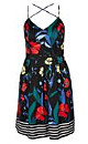 Boat House Printed Fit & Flare Dress