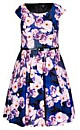 Women's Plus Size Rose Bloom Dress  | City Chic USA